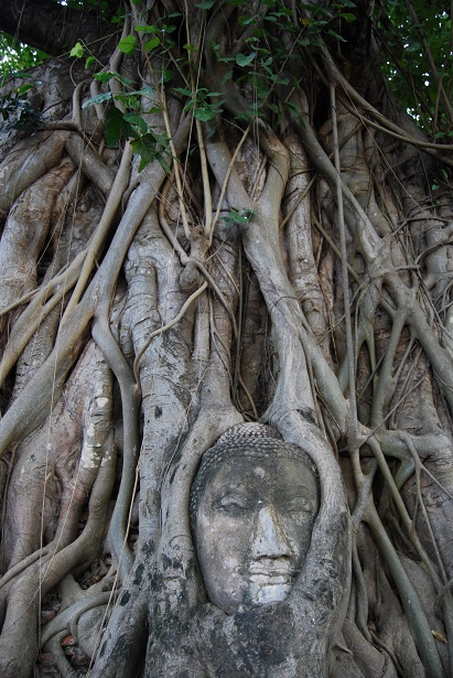 Ayutthaya thailande photo