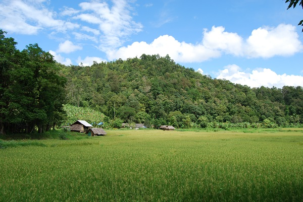 Trek Thailande photo