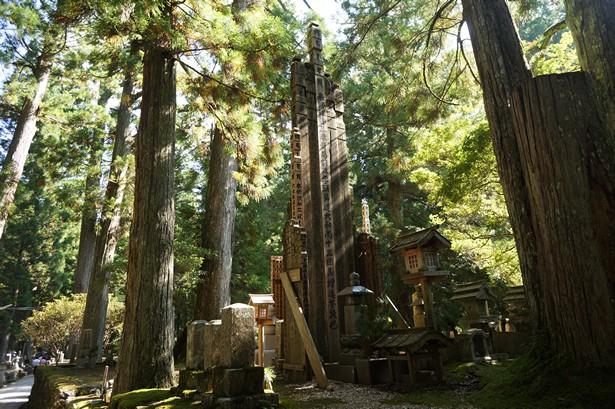 Cimetière du Mont Koya Japon