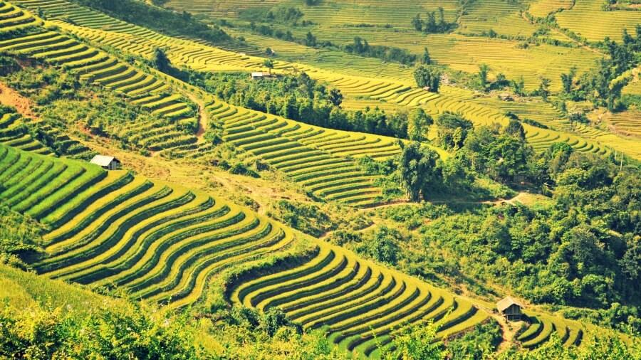 quoi faire au vietnam