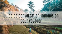 guide de conversation indonesien